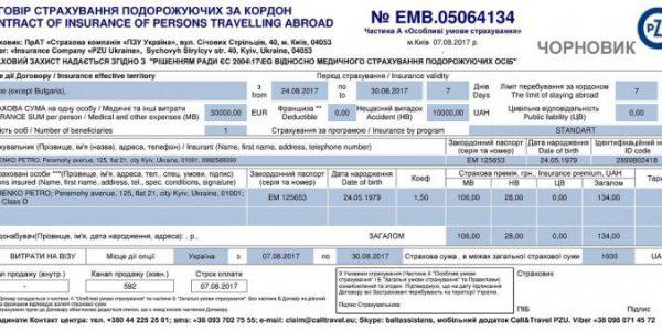 strahovka_dlya_rabochey_vizy