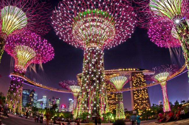 foto-singapur-sady-u-zaliva